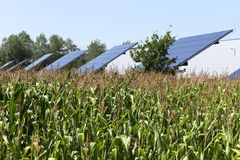 Solar Power Station on the summer Meadow Royalty Free Stock Image