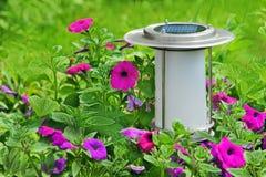 Solar powered garden lamp in garden. Royalty Free Stock Photography