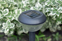 Solar-powered garden lamp. In spring stock photo