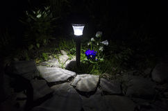 Solar-Powered LED Light Illuminating Exterior Plantings Royalty Free Stock Photos