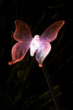 Solar powered night  butterfly pink light Royalty Free Stock Photos