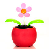 Solar powered plastic flower Stock Images