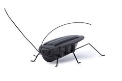 Solar powered toy grasshopper isolated Stock Photo
