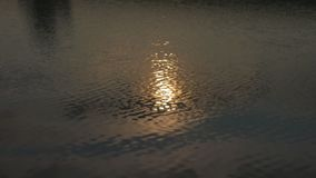 Solar reflections and glare on the surface of soothing waves of water in summer