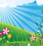 Solar rural landscape. Clear sunny skies and blooming meadow Royalty Free Stock Photos