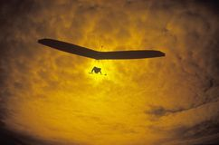 Solar Sailing Hang Gliding. In sunset silhouette, Morro Bay, CA Stock Photos