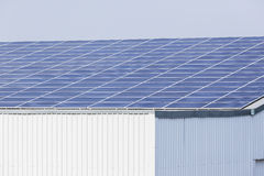 Solar Screens Building royalty free stock images