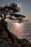 Solar shine. Mediterranean sea between Mentony and a princedom of Monaco Stock Photo