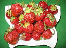Solar strawberries stock photos