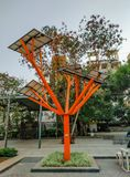 solar technology tree with solar panels above in Pune, Maharashtra, India shot in october,2018 royalty free stock images