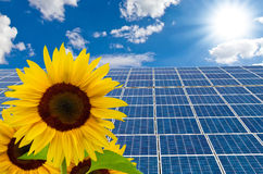 Solarcells and sunflower Royalty Free Stock Photo