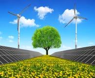 Solarenergieplatten mit Windkraftanlagen und Baum Stockfotografie