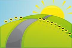 Solarfeld Lizenzfreies Stockfoto