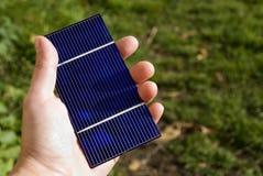 Solargrün Stockbild