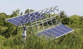 Solarzellen-Platte im Grünpflanzebereich Stockbild