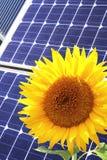 Solarzellen und Sonnenblume Lizenzfreies Stockfoto