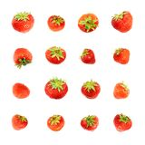 Solas fresas rojas aisladas Imagen de archivo