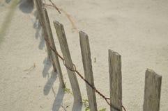 solbada för plats för strandgruppfolk avslappnande Royaltyfri Fotografi
