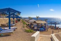 Solbada folk på stranden av Röda havet Royaltyfri Bild