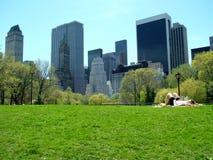Solbada i Central Park arkivbilder