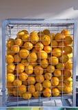 Solbelysta apelsiner som inomhus förläggas i en bur Fotografering för Bildbyråer