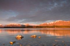 Solbelysta stenar i grunt vatten av sjön Tekapo på solnedgången Arkivbilder