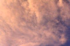 Solblomma för bakgrundsillustration royaltyfri bild
