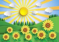Solblommafält Arkivfoto