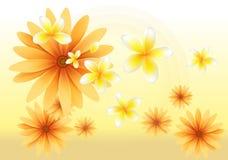 Solblomman och gulingorkidén blommar på skymning Vektor Illustrationer