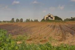 Solchi arati in valle di Hanadiv, Israele Fotografia Stock Libera da Diritti