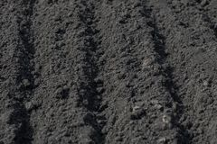 Solchi vuoti su terra nera in un campo dell'azienda agricola in molla in anticipo Preparazione di suolo per la piantatura dei sem fotografia stock libera da diritti