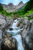 Solco e foresta alpini di mountaine nel parco nazionale di Ordesa Fotografia Stock