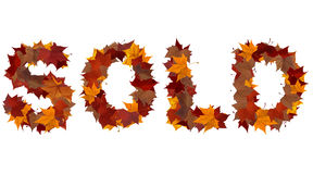 Sold word made with fall leaf isolated Stock Photos