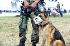 Soldado del Ejército del EE. UU. y perro de protector Imagen de archivo libre de regalías