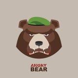 Soldado del oso en una boina verde animal enojado ilustración del vector