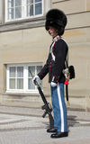 Soldado dinamarquês Fotografia de Stock
