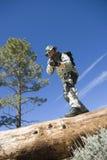 Soldado With Rifle Standing no tronco de árvore Imagem de Stock