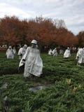 Soldados de la caída Foto de archivo libre de regalías
