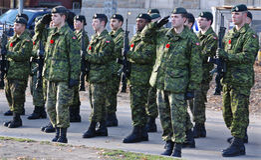 Soldados dos canadenses Fotos de Stock Royalty Free