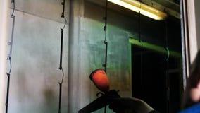 Soldadura do arg?nio Folhas de metal masculinas das soldas do soldador com soldadura do argônio Planta industrial Fabricação da p vídeos de arquivo