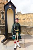 Soldat auf Parade stockfoto