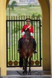 Soldat de cheval de la Malaisie Images stock