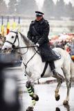 Soldat de jour national de la Roumanie Image libre de droits