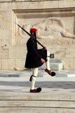 soldat för guardmonteringar royaltyfri fotografi
