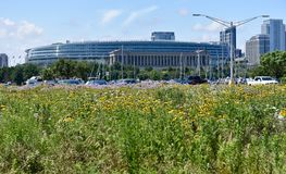 Soldat Field And Wildflowers Arkivfoto
