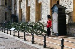 Soldat på tornet av London Arkivfoto