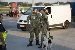Soldat ukrainien avec la patrouille et la vérification de position de chien de renifleur Photos stock