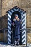 Soldat vom Prag-Schloss-Schutz auf dem Posten des Schutzes der Ehre in Prag lizenzfreie stockfotografie