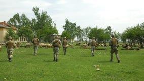 Soldater beväpnade truppen i militär klädkamouflage som går på en patrull i en by till och med en flock av får arkivfilmer