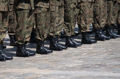 Soldater i bildande royaltyfri bild